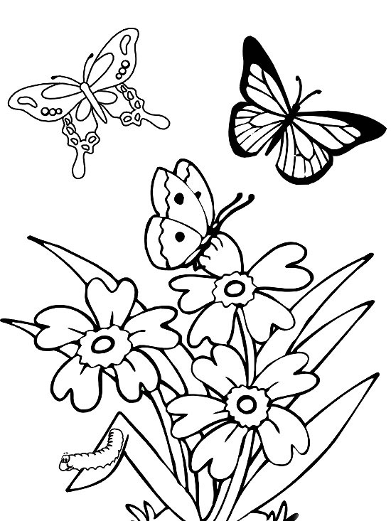 printable spring coloring pages - Coloring Worksheets