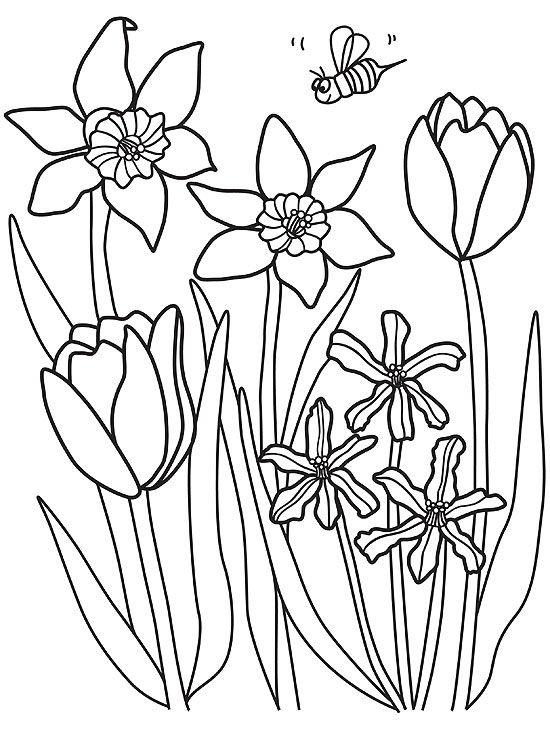 Spring Coloring Pages For Toddlers Coloring Coloring Pages