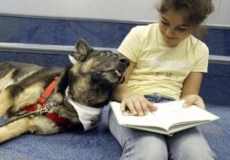 Study Reading To Dogs May Help Children Enjoy Books More