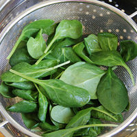 Rinse the Spinach