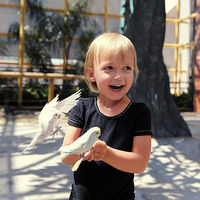 child with parakeets