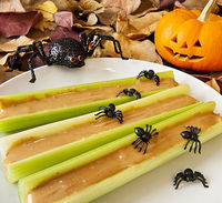Celery and spiders