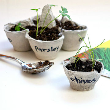 Favorite! Love this from a list of egg carton uses this blogger put together! So eco friendly!