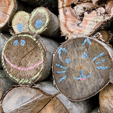 Logs with chalk face