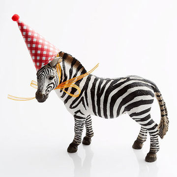 Zebra Wearing Party Hat