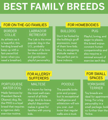 Best Family Breeds