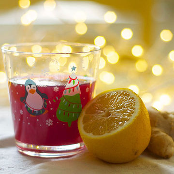 Cranberry-Ginger Fizz