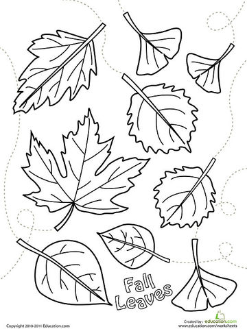 fall leaves printable coloring page - Coloring Pages Fall Printable