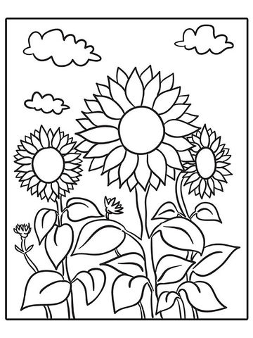 Sunflowers Printable Coloring Page