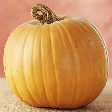 Medium pumpkin