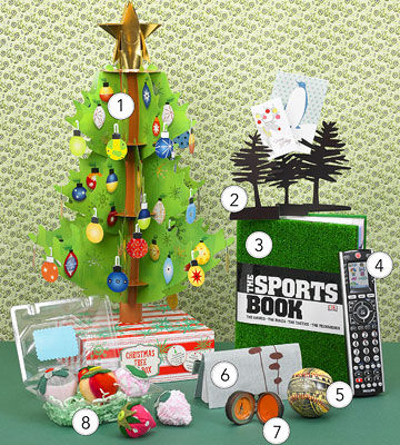 holiday gifts: tree in a box, sports book