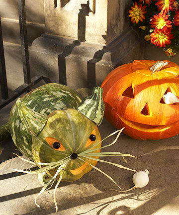 Cute And Kooky Creatures Made From Pumpkins And Gourds