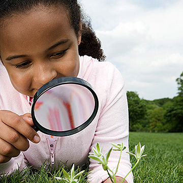 child looking at plant with magnifying glass
