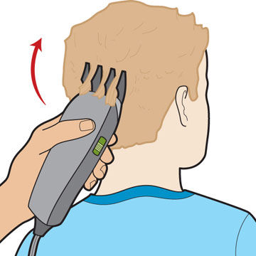 How to Use a Clipper to Cut One Length