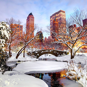 NYC Central Park