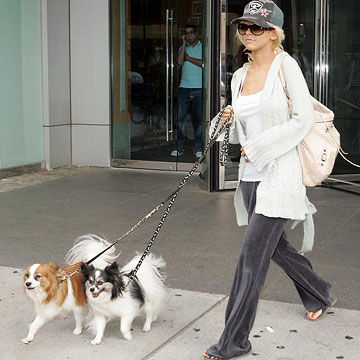 Christina Aguilera and Stinky, Scratchy & Coco