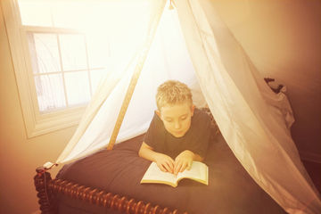 Boy reading under tent fort made of sheets