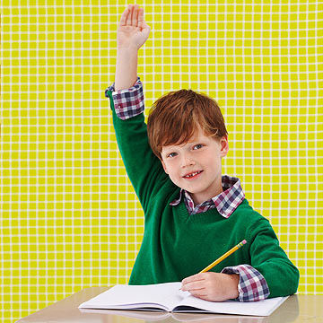 boy raising his hand in class
