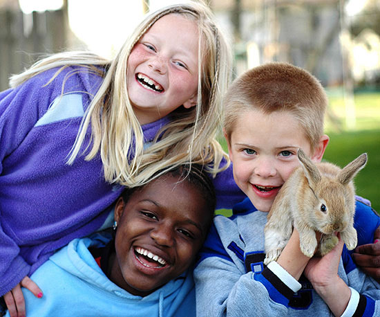 How to help an adopted child and biological child get along ccuart Choice Image