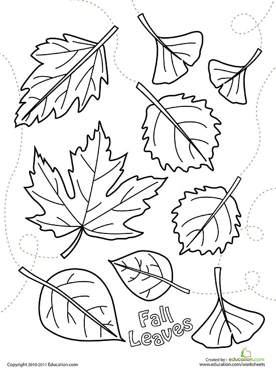 printable fall coloring pages - Leaves Coloring Page 2