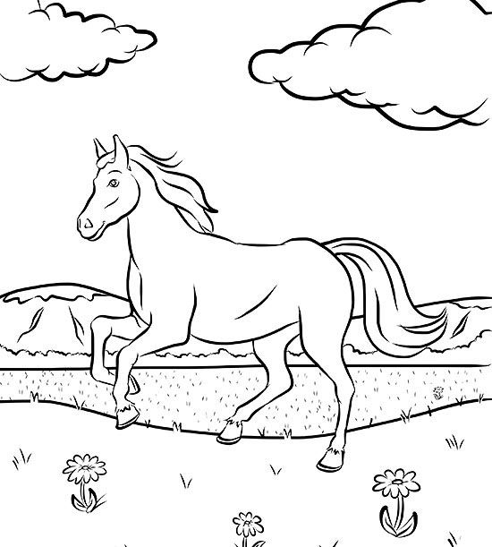 Free Horse Coloring Page Coloring Page Of
