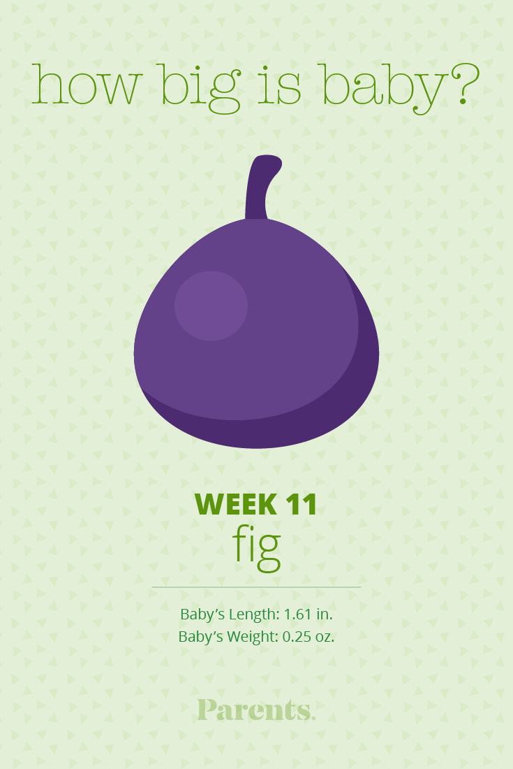 11 Weeks Pregnant - Parents com
