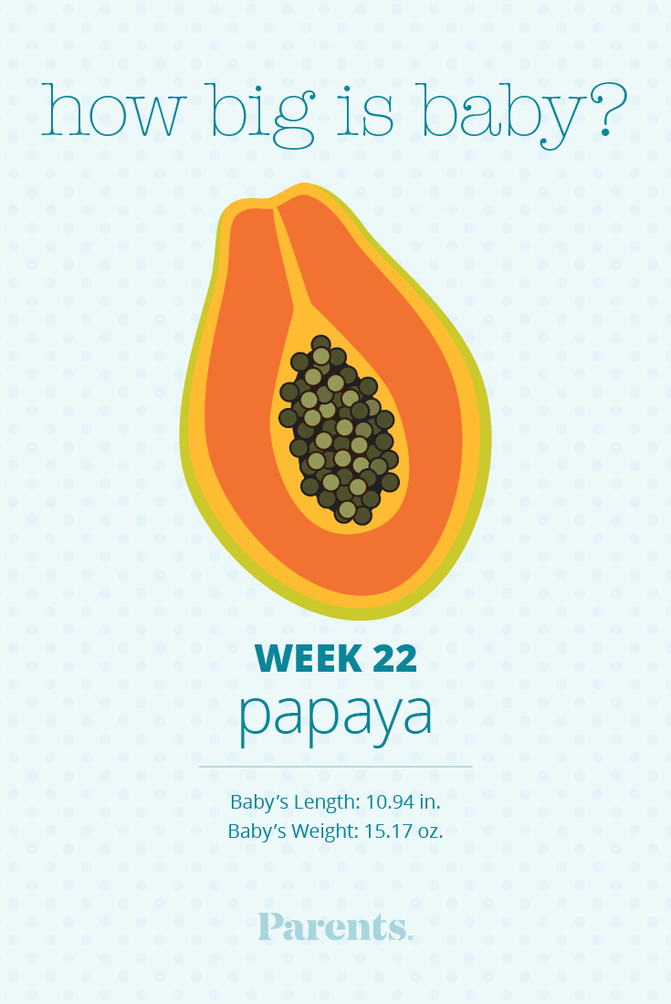 22 Weeks Pregnant - Parents.com22 Weeks Fetus Size Of Coconut