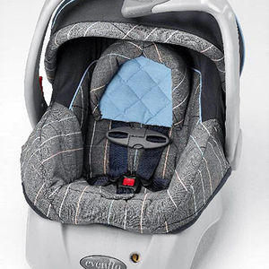 Embrace Infant Car Seats and Carriers Recalled recall image