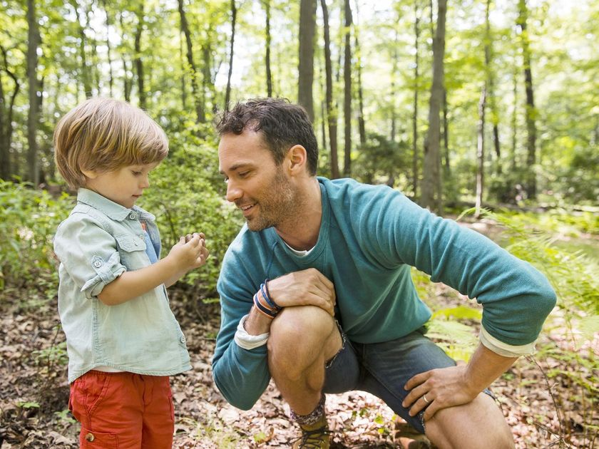 Father And Son In Woods Look at Rocks In Hands