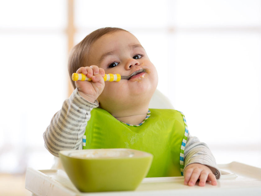 Baby in Highchair Feeds Self With Spoon