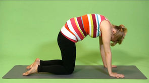 Prenatal Yoga: Dog and Cat Poses