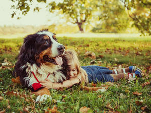 Best Breed Of Dog For Child With Allergies