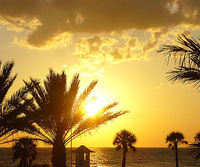 Hyatt Regency Clearwater Beach Resort & Spa Clearwater, Florida