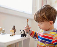 boy playing with animal figures