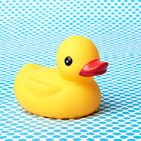 rubber ducky
