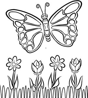 Free printables printable coloring pages birthday cards games butterfly coloring page bookmarktalkfo Image collections