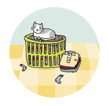 Illustrated Cat and Laundry