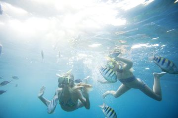 Little Known SPRING Break Curacao Swimming