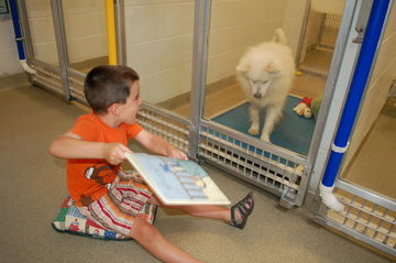 young boy reading to shelter dog