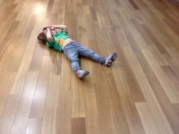Toddler Tantrum on Hardwood Floor