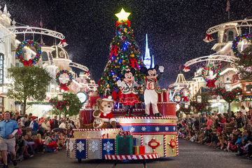 Disney World During The Holidays