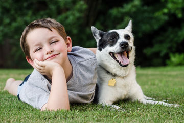 dogs help kids lower stress levels