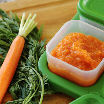 Freeze Leftover Carrot Puree