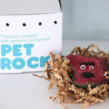 Pet Rock Painting