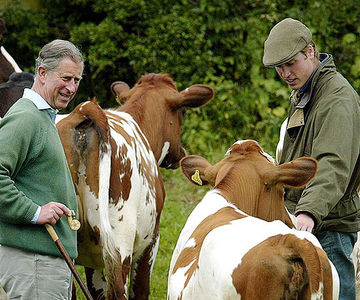Prince William Talk to His Father