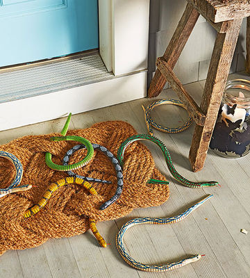 Snake welcome mat
