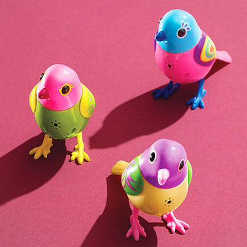 Three DigiBirds