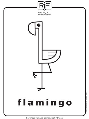 Brilliant Flamingo