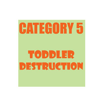 toddler destruction