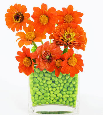 orange flowers in vase